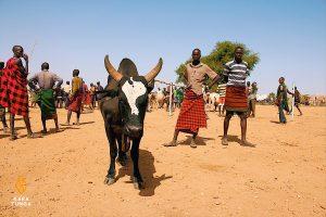 Kara-Tunga Karamoja Uganda Cultural Tours Cattle Auction Market Kotido
