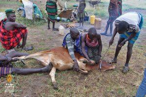 kara-tunga-karamoja-uganda-tours-travel-safari-culture