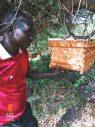 karamoja-bee-keeping-honey-tours-travel-safari-kara-tunga-9