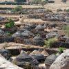 visit nakapelimoru vilage kotido