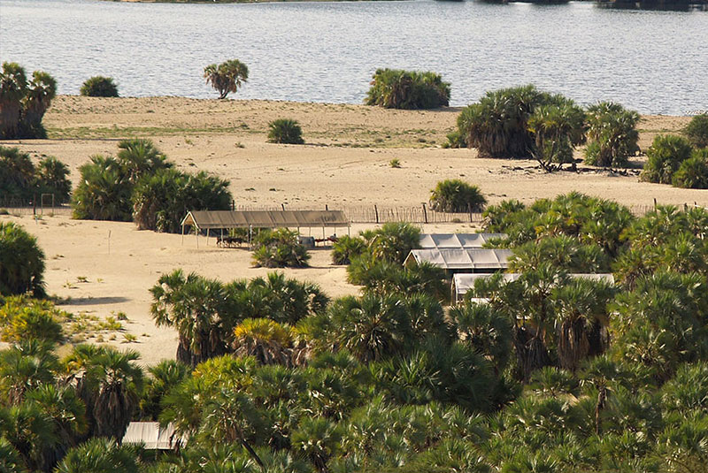 lobolo-camp-lake-turkana-hotel-lodge-accommodation-3