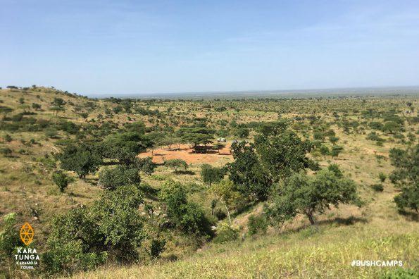 kara-tunga-karamoja-tours-travel-safari-fly-bush-camp-site-11