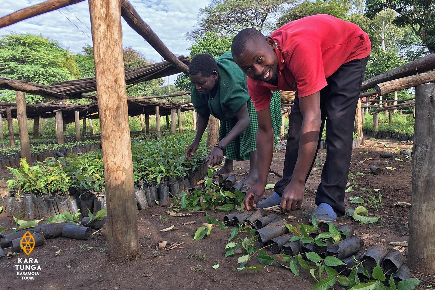 kara-tunga-tree-planting-4