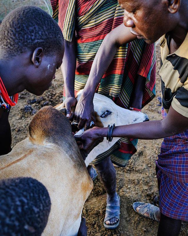 kara-tunga-karamoja-uganda-cultural-tour-travel-safari-village-kraal-kidepo-7