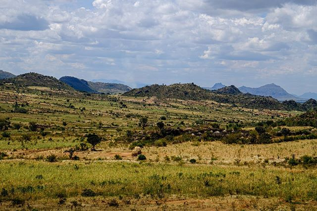 kara-tunga-karamoja-uganda-cultural-tour-travel-safari-village-kraal-kidepo-8