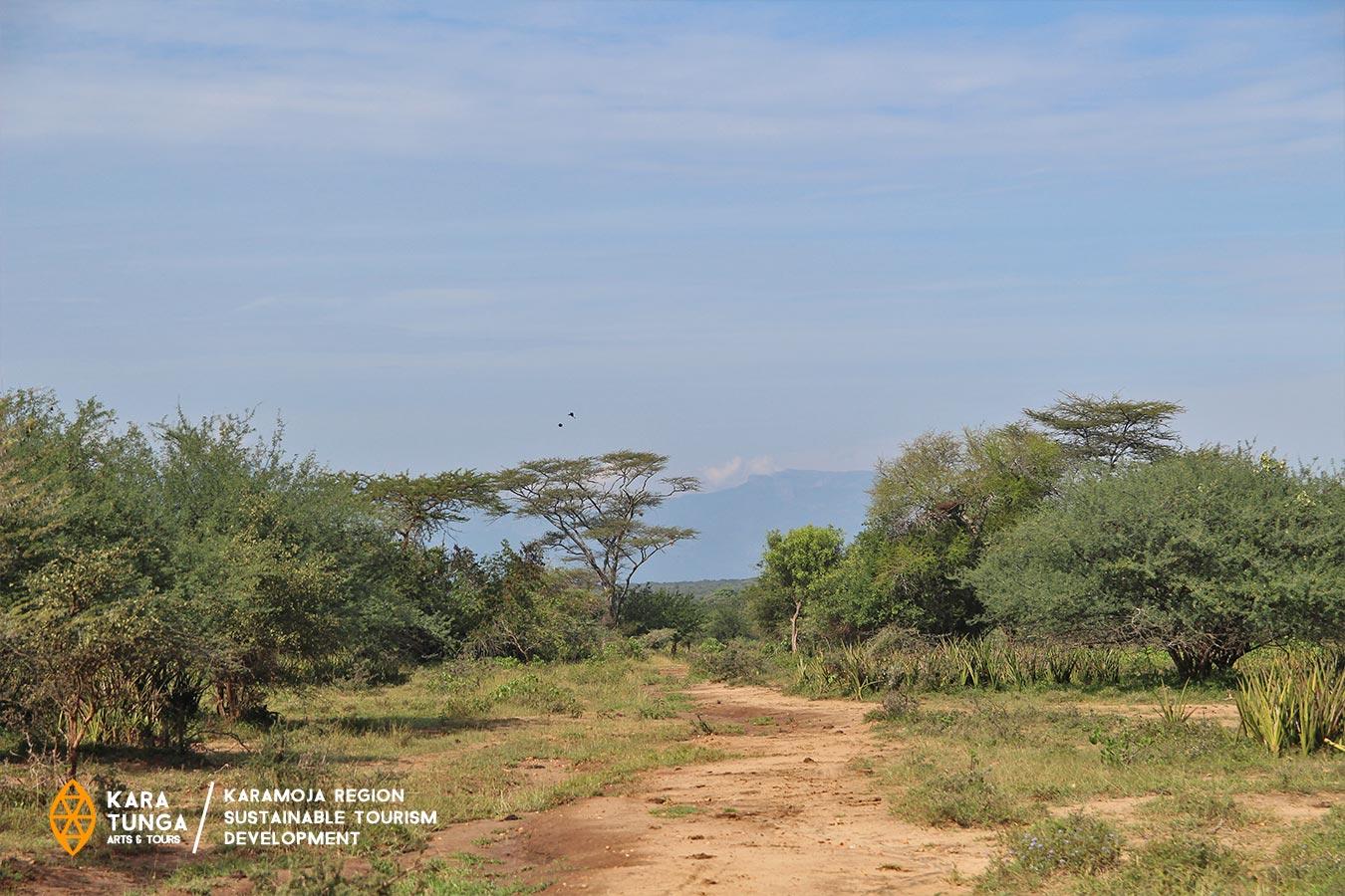 kara-tunga-karamoja-uganda-tours-kalia-peace-village-amudat-pokot-culture-15