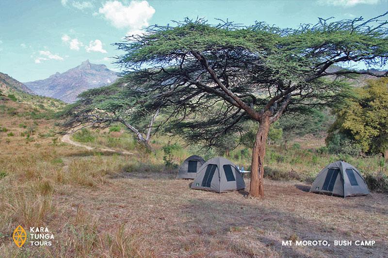 kara-tunga-karamoja-uganda-tours-mount-moroto-bush-camp-1