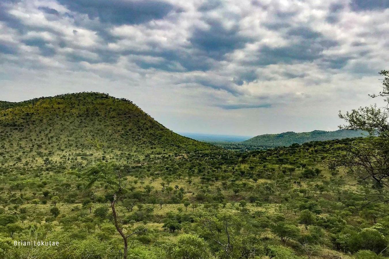 Brian-Lokutae-Birding-Karamoja-Northeastern-Uganda